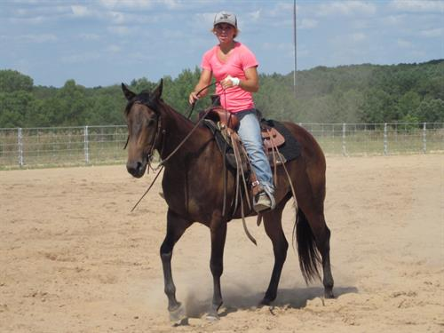 Horse Classified Ad MML SWEET WIRED SUE