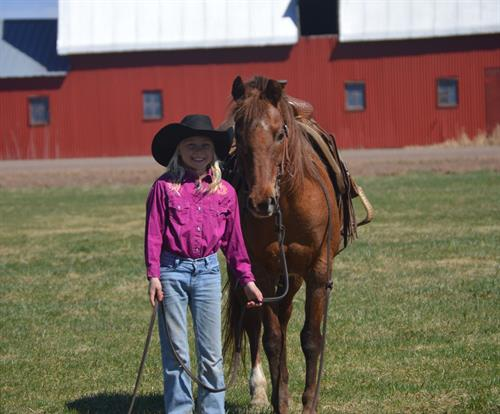 Horse Classified Ad MISTY
