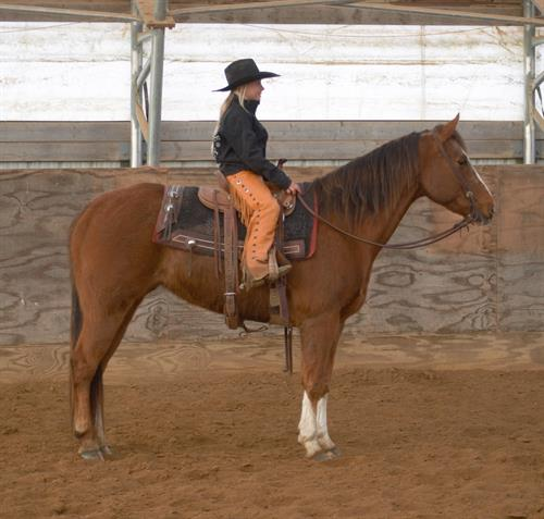 Daddys Balmy Gal aka Cassie~ 15 yr old AQHA Chestnut Mare.  **VIDEOS**BARREL HORSE  Cassie is a very nice little barrel horse. She stands about 14.3 hands and is very nicely put together. She is a push style, very solid little mare that turns very nice barrels.