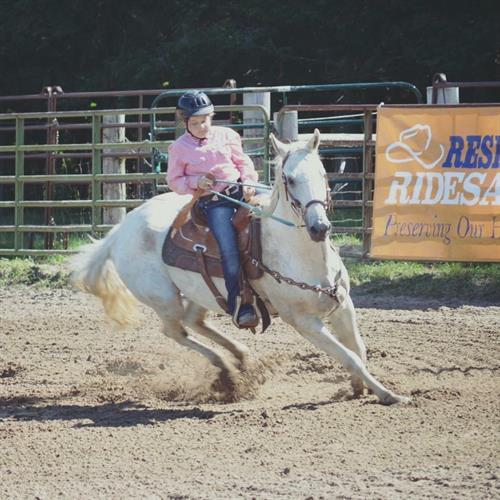 Capers Spirit aka Raffi 2000 AQHA Gray Gelding. This guy is perfect for a young rider looking to just get started or someone looking for their step up horse. He is bomb proof, easy going and eager to please. He knows all of the WSCA games, has qualified for champ show the past 2 years we have had him and w his previous owner.