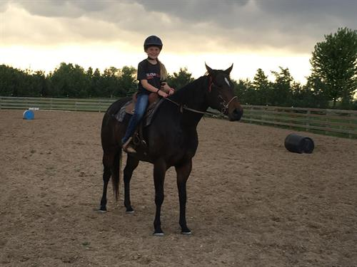 Empress Corona aka Cocoa 9 yr old AQHA Brown Mare.  **VIDEO**Cocoa is a 9 year old mare. Gentle, sweet, super nice to be around. Ridden by a 11 & 12 year old. Solid barrel horse will hunt and find the barrels. She has been shagged off at rodeo performances. Has been in through the WSCA events. Needs a rider that knows what their doing.